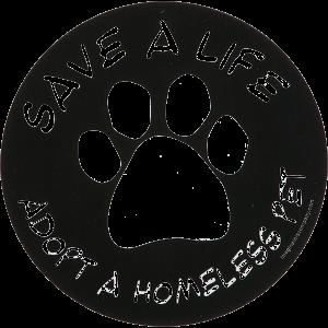 save-life-adopt-pet