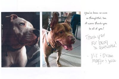 A thank you letter from two pitt bulls named Drake and Juice