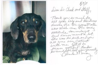 A thank you letter from a pet owner who lost their dog Mollie