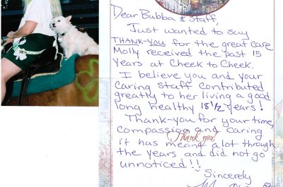 A thank you letter from a pet owner named Moe whose dog Molly lived to 18 years