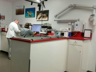 A treatment room in the back of the clinic. Pictured is an exam table, two team members on computers and various medical supplies