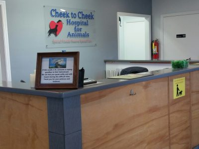 The front reception area for the clinic